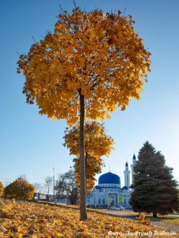 Соборная мечеть г. Майкопа открылась после ремонта